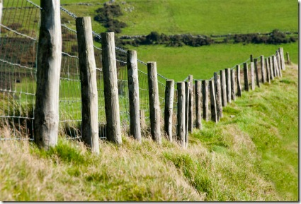 Wodden Posts with Metal Wire Fence in Cattle Field